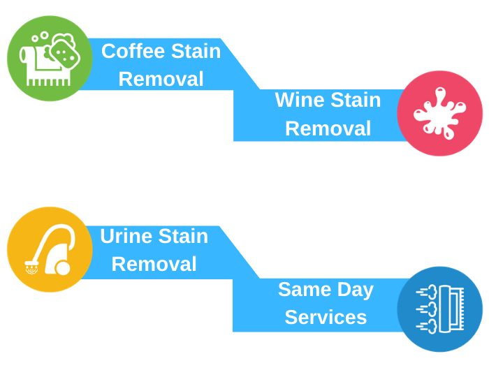 Professional Carpet Stain Protection Service